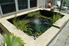 Sankey Pools (JSAquatics)  - Fish Pond